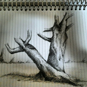I drew this while learning to sketch a tree from a book.
